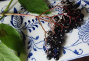 Elderberry: Immune-System Booster